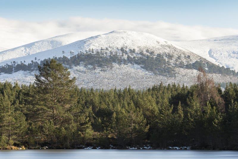 Montaña de Sgor Gaoithe en Glen Feshie en el parque nacional de Cairngorms de Escocia foto de archivo libre de regalías