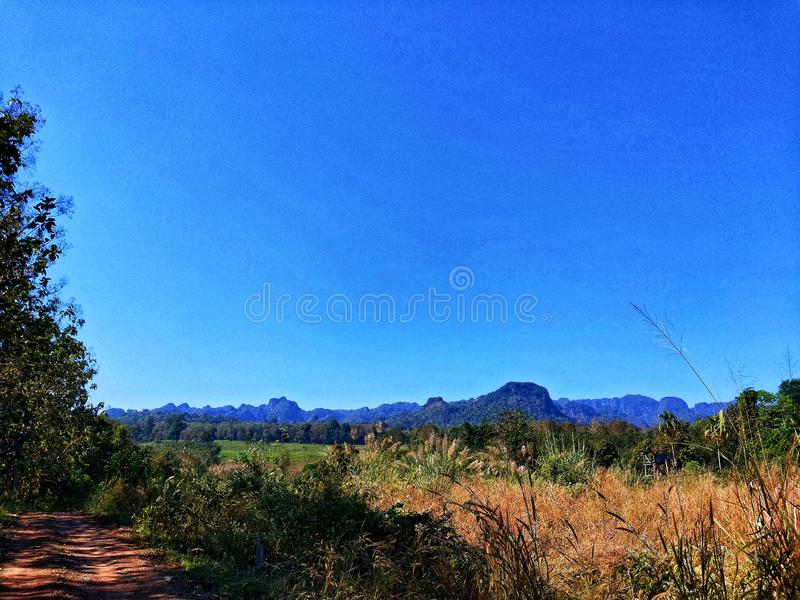 Montaña del azul de cielo del árbol fotografía de archivo libre de regalías