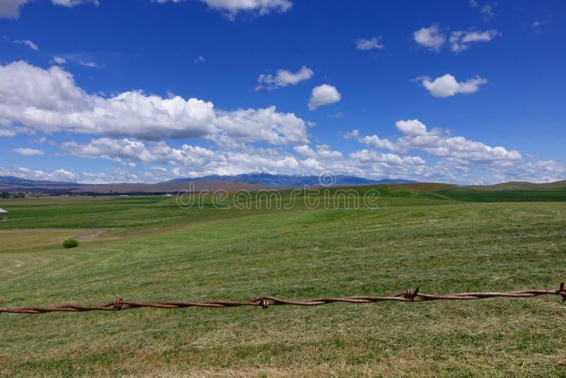 Montaña del Cuddy, en Midvale, Idaho fotos de archivo