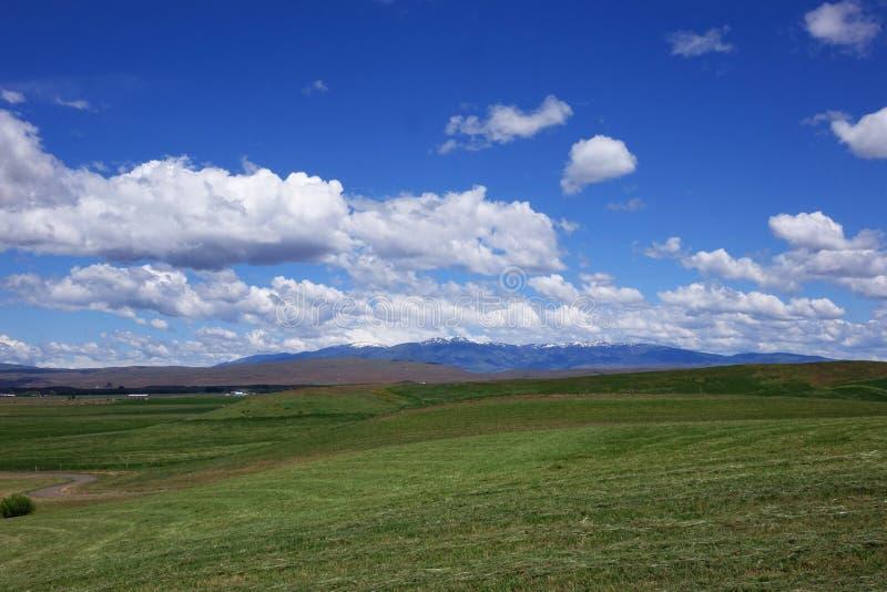 Montaña del Cuddy, en Midvale, Idaho imagen de archivo libre de regalías