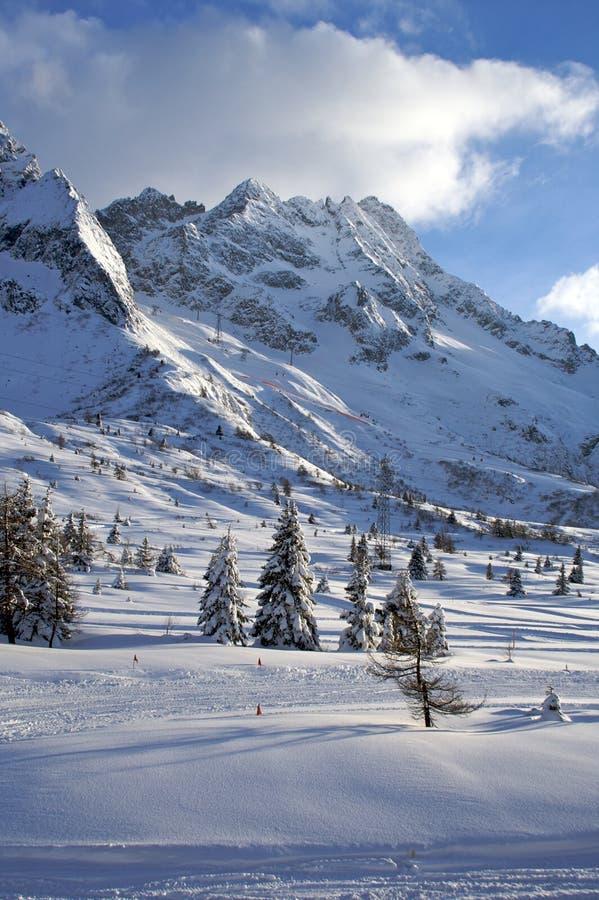 Montaña del esquí, Passo Tonale imágenes de archivo libres de regalías