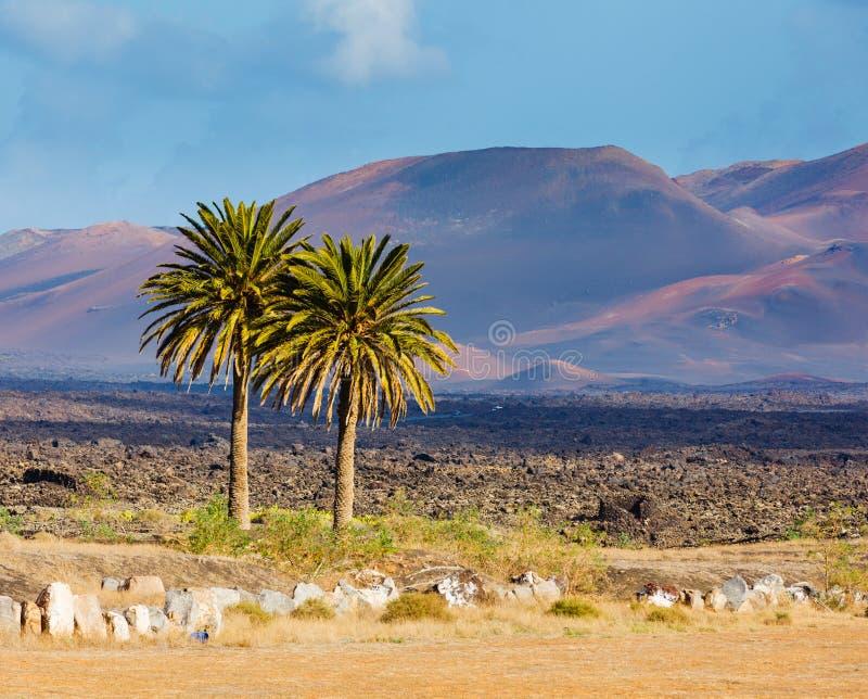 Montaña del paisaje en Lanzarote imagen de archivo