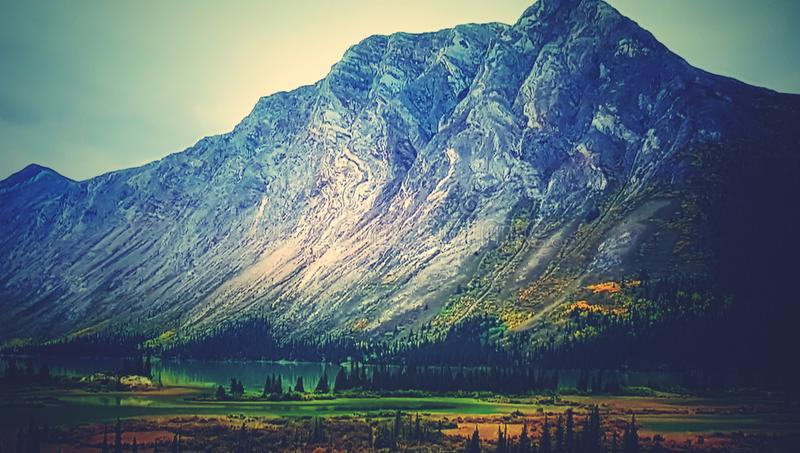 Montaña del primer del árbol de la naturaleza fotografía de archivo libre de regalías