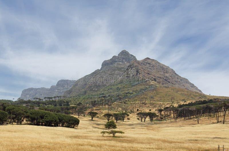 Montaña del vector en Ciudad del Cabo imágenes de archivo libres de regalías
