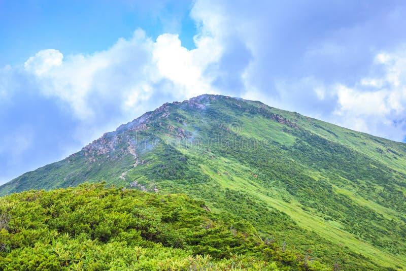 Montaña del verano imagen de archivo libre de regalías