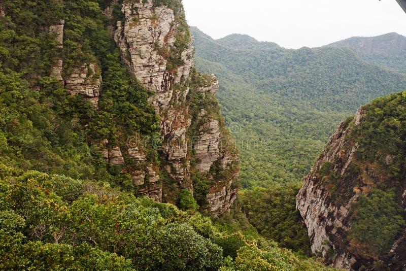 Montaña en árbol verde. Landscap del verano. imagen de archivo libre de regalías