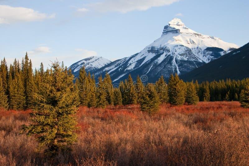 Montaña en el parque nacional de Banff, Alberta, Canadá foto de archivo libre de regalías