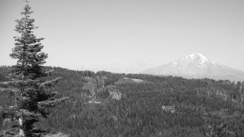 Montaña en el rastro pacífico de la cresta imagenes de archivo