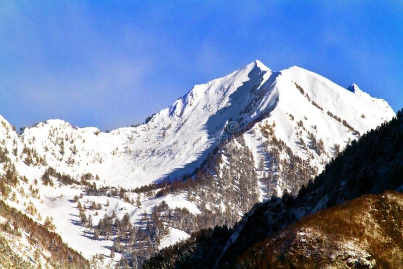 Montaña en Valtellina fotografía de archivo