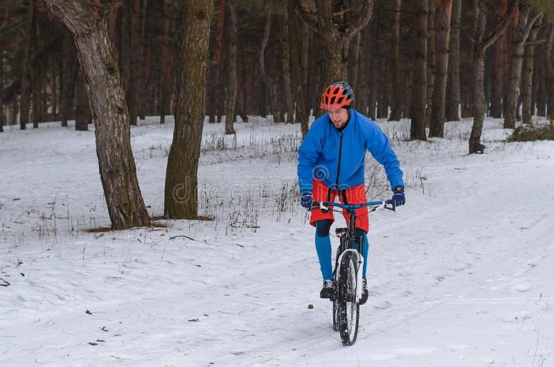 Montaña extrema biking en el bosque nevado fotografía de archivo libre de regalías