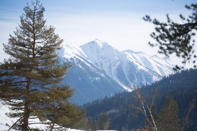 Montaña hermosa foto de archivo