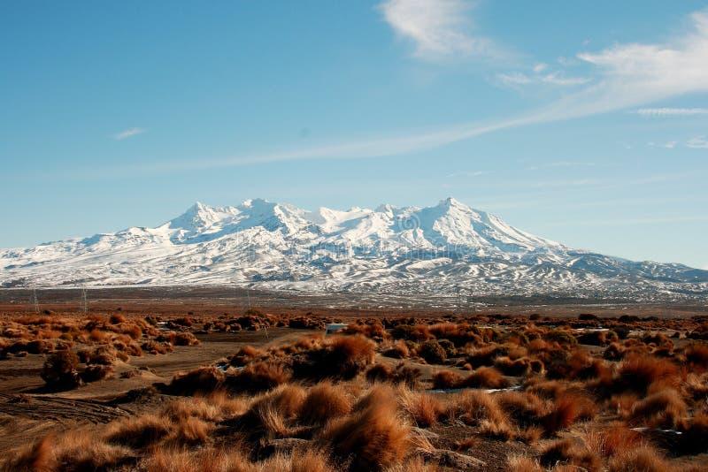 Montaña hermosa del paisaje, Nueva Zelanda imagenes de archivo