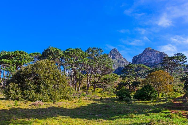 Montaña máxima Cape Town de los diablos foto de archivo libre de regalías