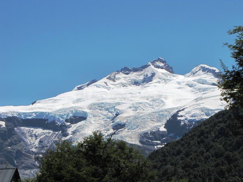 Montaña nevosa increíble rodeada por los árboles y el bosque en la Argentina fotos de archivo libres de regalías