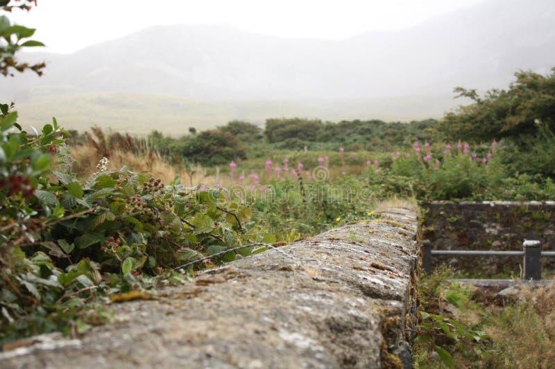 Montaña santa de Irlanda imagen de archivo