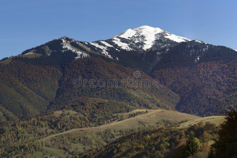 Montaña Strimba, Cárpatos foto de archivo