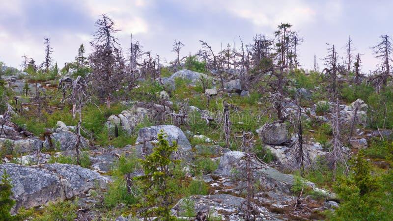 Montaña Vottovaara imagenes de archivo