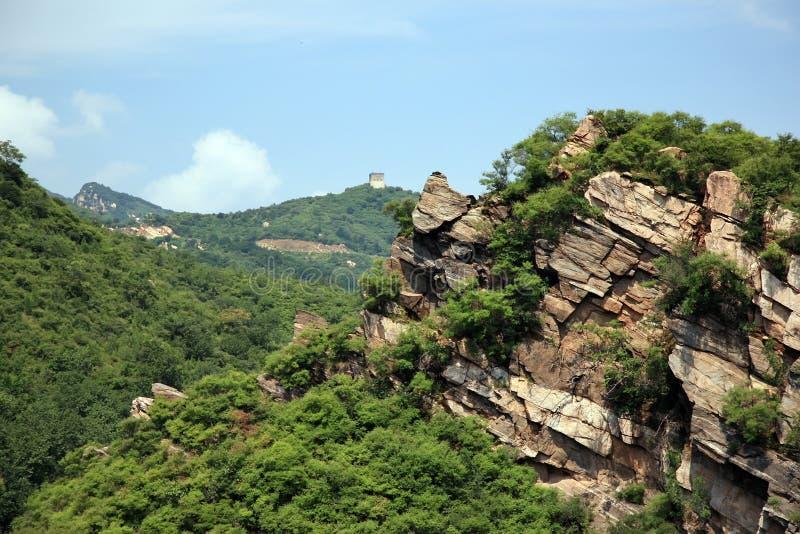 Montaña y bosque fotos de archivo
