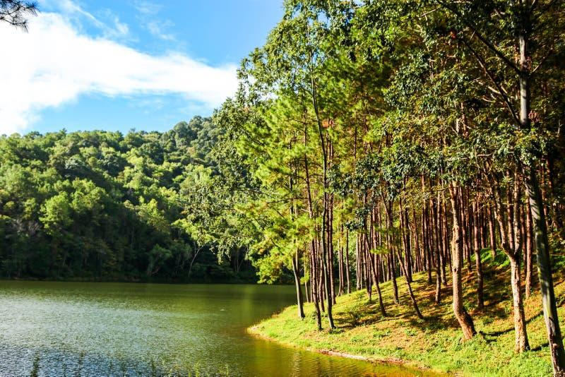 Montaña y lago del cielo azul fotos de archivo libres de regalías