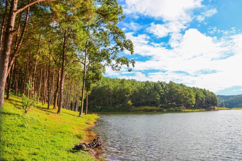 Montaña y lago del cielo azul fotografía de archivo