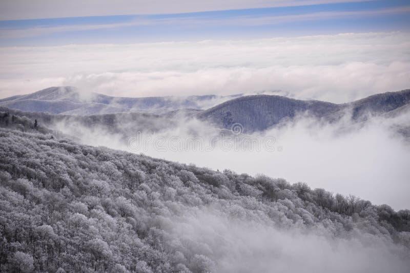 Montañas apalaches en el invierno imagen de archivo