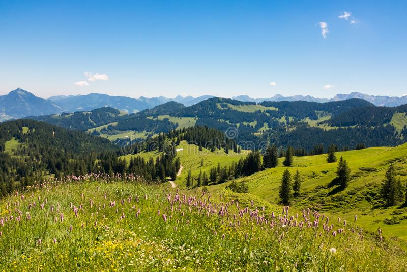 Montañas bávaras con Mountain View y prados en el Allgau imagenes de archivo