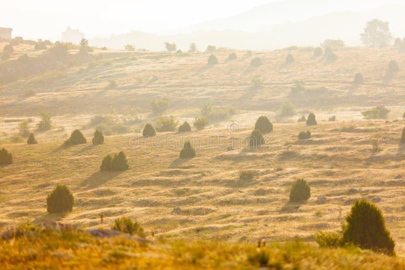 Montañas brumosas por mañana Paisaje soleado Concepto del turismo foto de archivo libre de regalías