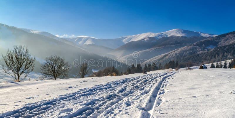 Montañas cárpatas coronadas de nieve hermosas por una mañana ligera MI imagen de archivo libre de regalías