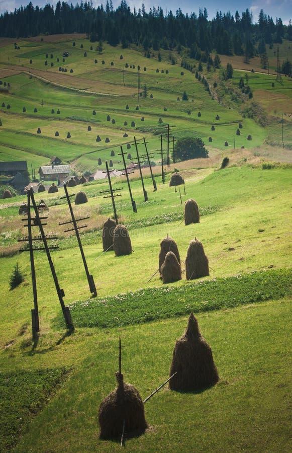 Montañas cárpatas, Ucrania fotografía de archivo libre de regalías