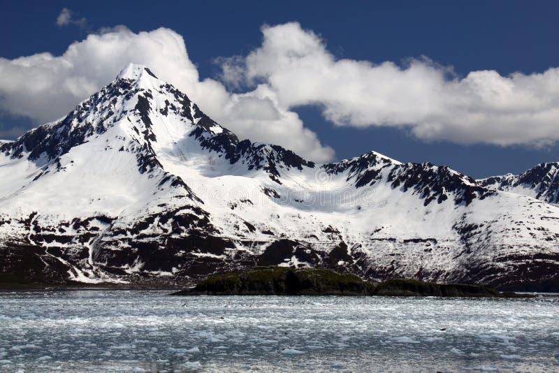 Montañas coronadas de nieve - parque nacional de los fiordos de Kenai fotografía de archivo libre de regalías