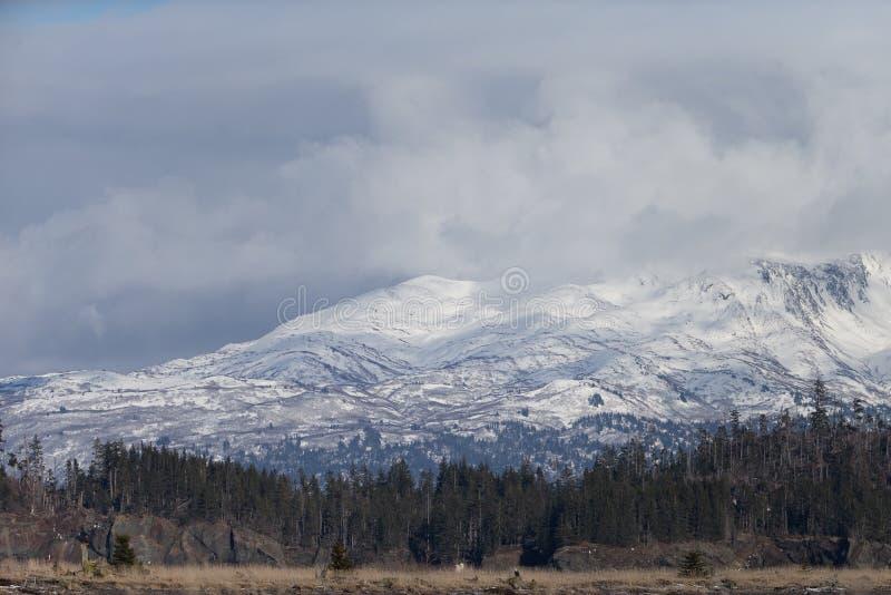 Download Montañas De Alaska En El Kenai Pennsula Imagen de archivo - Imagen de calvo, vuelo: 42442873
