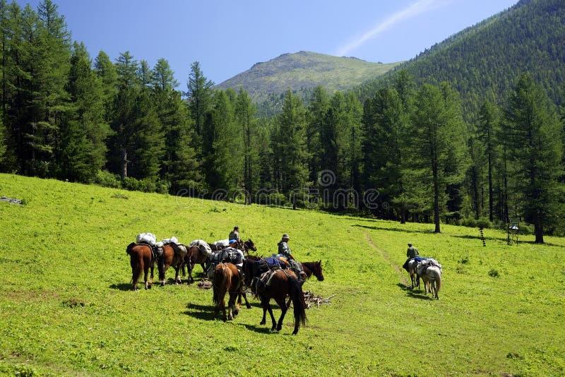 Montañas de Altai imagenes de archivo
