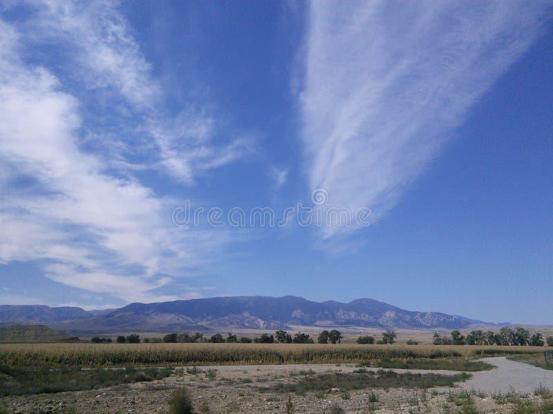 Montañas de Beartooth fotos de archivo libres de regalías