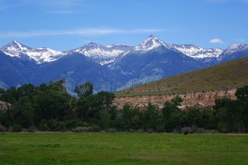 Montañas de Beaverhead - Idaho foto de archivo