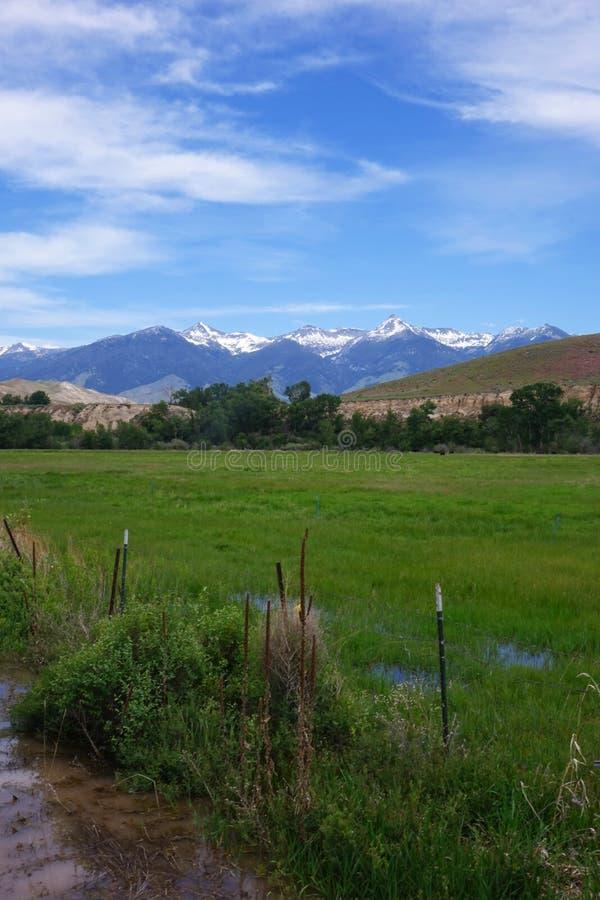 Montañas de Beaverhead - Idaho fotos de archivo libres de regalías