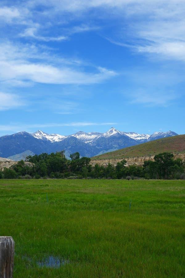 Montañas de Beaverhead - Idaho fotografía de archivo
