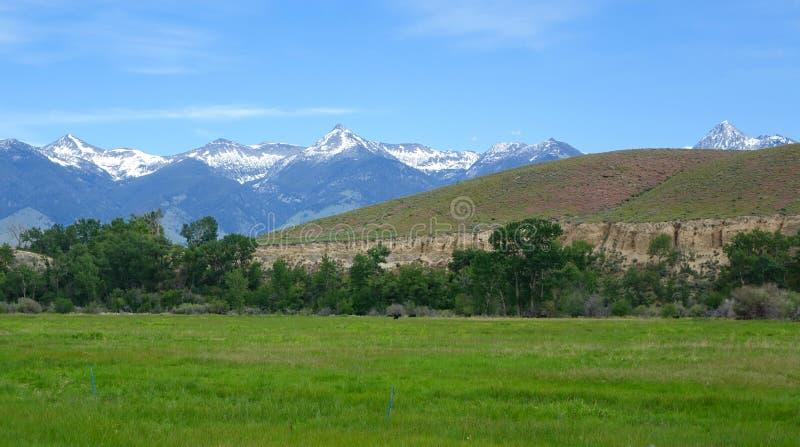 Montañas de Beaverhead - Idaho fotografía de archivo libre de regalías