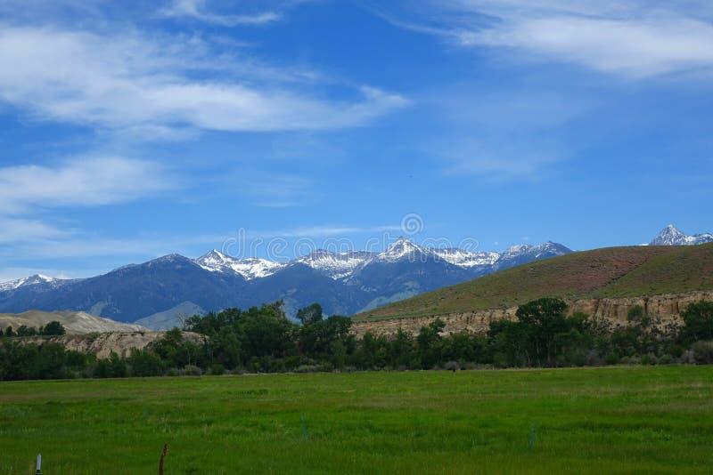 Montañas de Beaverhead - Idaho imagen de archivo