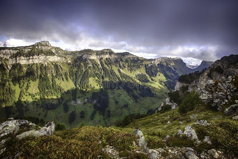 Montañas de Bernese desde arriba de Niederhorn en el verano, cantón de Berna, Suiza, papel pintado foto de archivo