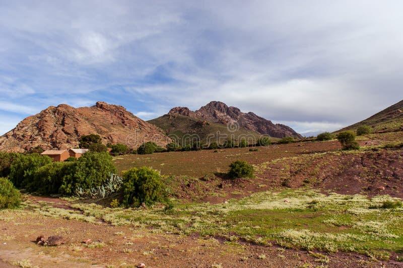 Montañas de Bolivia, altiplano fotografía de archivo libre de regalías
