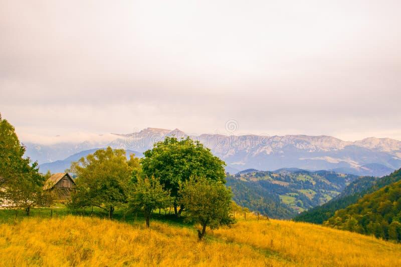 Montañas de Bucegi imagenes de archivo