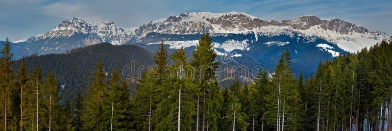 Montañas de Bucegi en Rumania fotografía de archivo libre de regalías