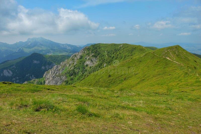 Montañas de Ciucas en Rumania foto de archivo libre de regalías