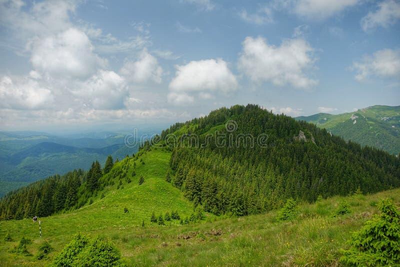 Montañas de Ciucas en Rumania imagenes de archivo