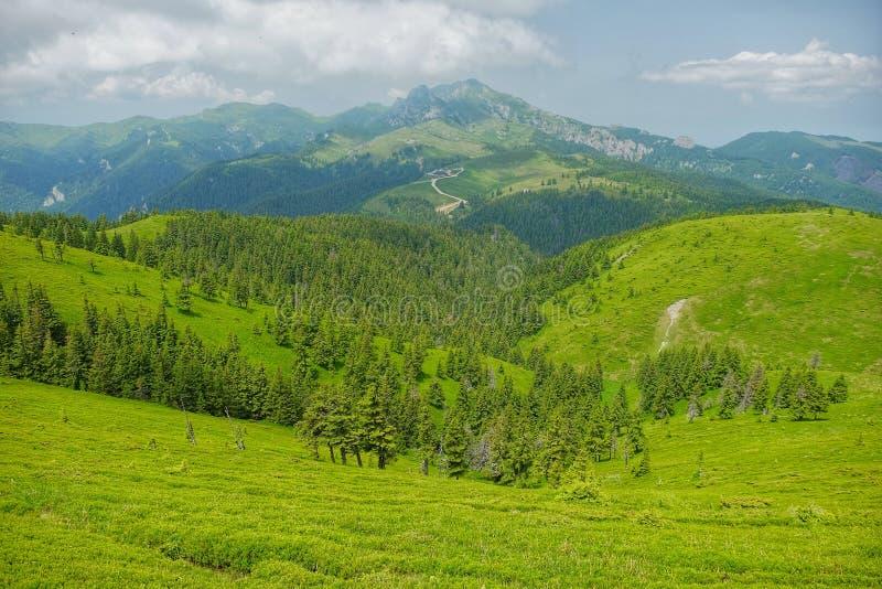 Montañas de Ciucas en Rumania fotografía de archivo