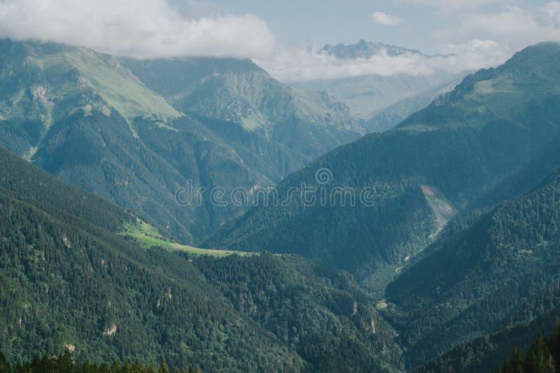 Montañas de Kackar con el landscapei verde n Rize, Turquía del bosque fotos de archivo libres de regalías
