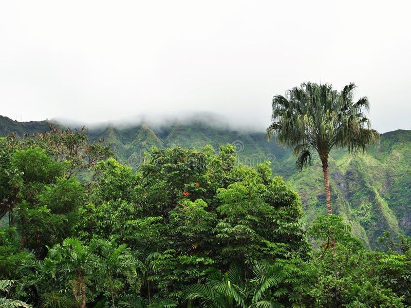 Montañas de Kooalu fotos de archivo