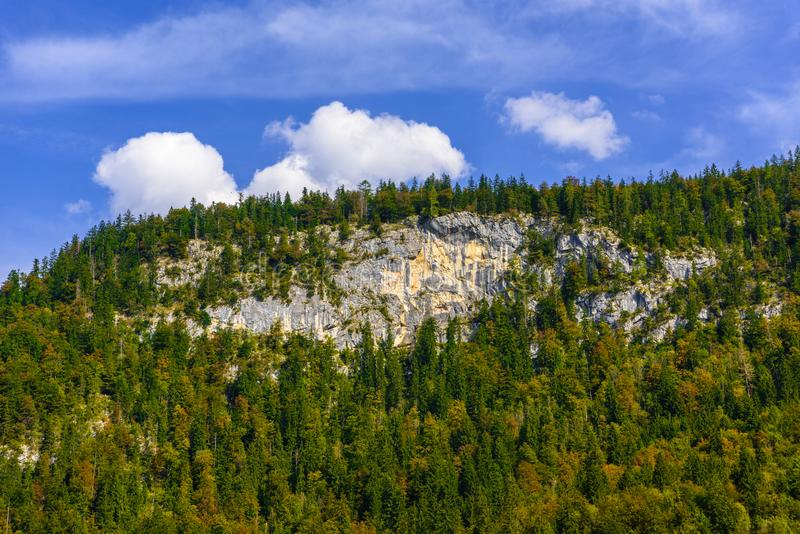 Montañas de las montañas cubiertas con el bosque, Koenigssee, Konigsee, parque nacional de Berchtesgaden, Baviera, Alemania foto de archivo libre de regalías