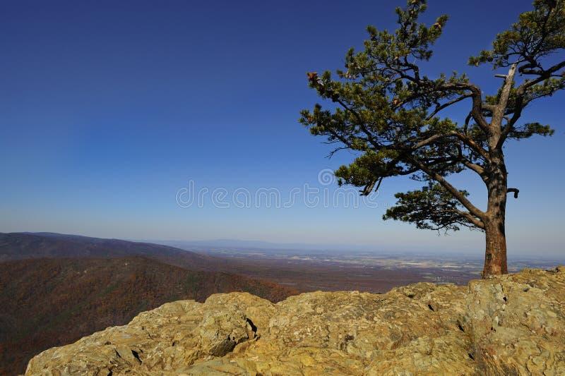 Montañas de Ridge azul Vista del gallinero de los cuervos fotografía de archivo libre de regalías