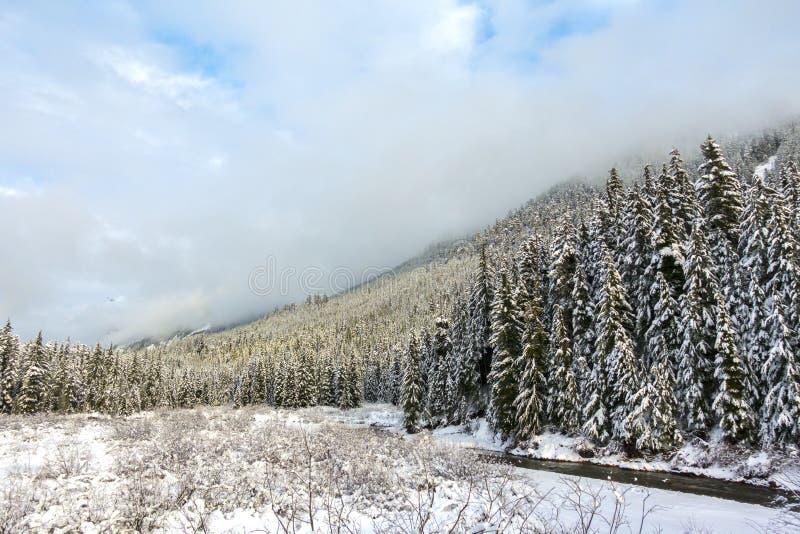 Montañas de Snoqualmie con niebla fotografía de archivo